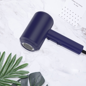a professional hair dryer