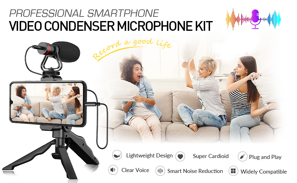 professional video microphone