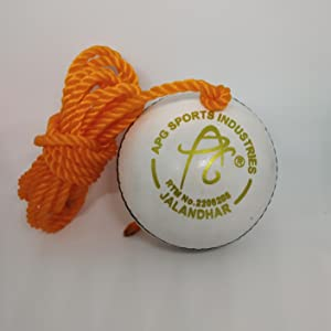 APG White Leather Cricket Hanging Ball for Practice and Bat Knocking