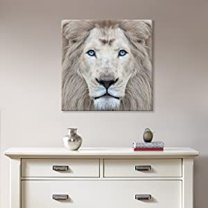 White Lion Wall Pictures Giclee Print