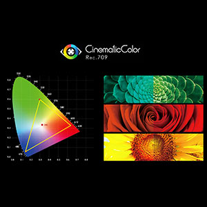 True Color · Professional Color Calibration