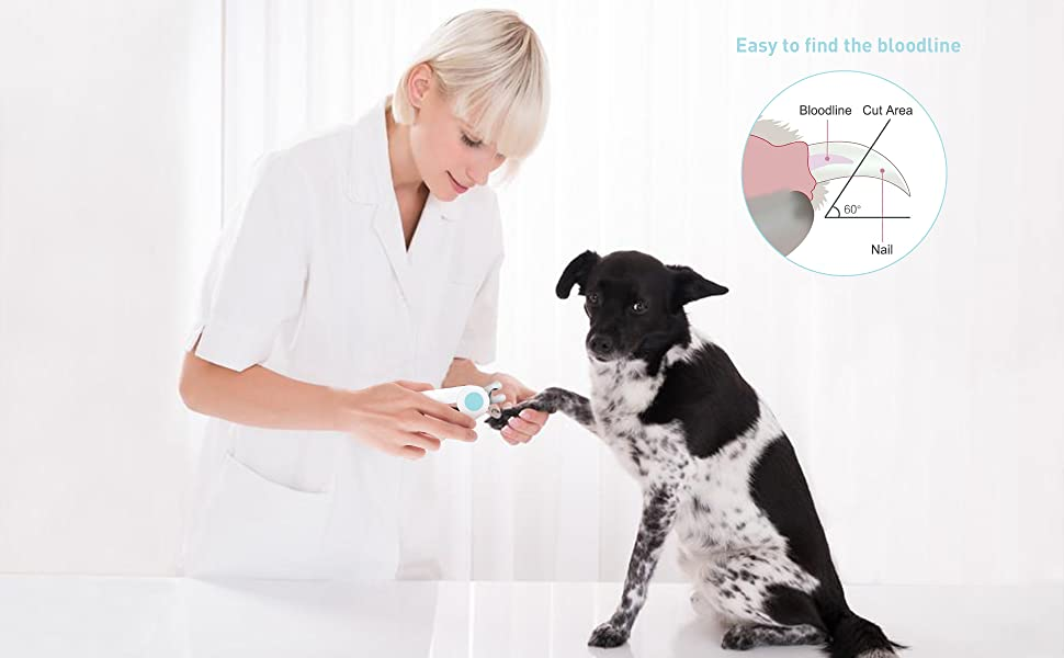 pet nail clippers for dogs and cats