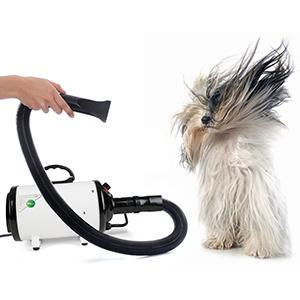 super power to groom pet