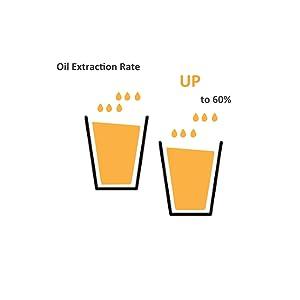 High oil yield