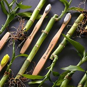 The Humble Co. - Bamboo