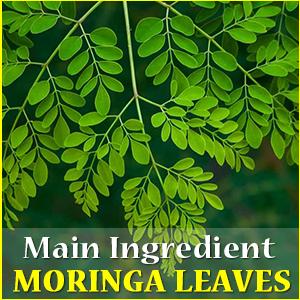 Organic Moringa Tablets Moringa Leaf Shigru Drumstick Moringa oleifera Amla Neem Haritaki Capsules