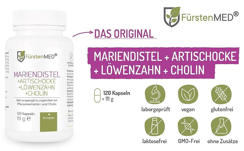 Mariendistel Artischocke Löwenzahn Cholin