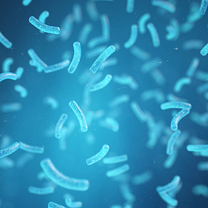 bacteria coliform drinking ecoli for home kit kits salmonella strips tester testing tests water well