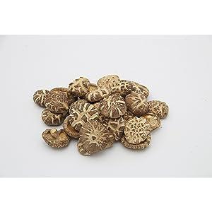 four sigmatic mushroom coffee natural vitamin c chaga mushroom powder turkey tail mushroom host