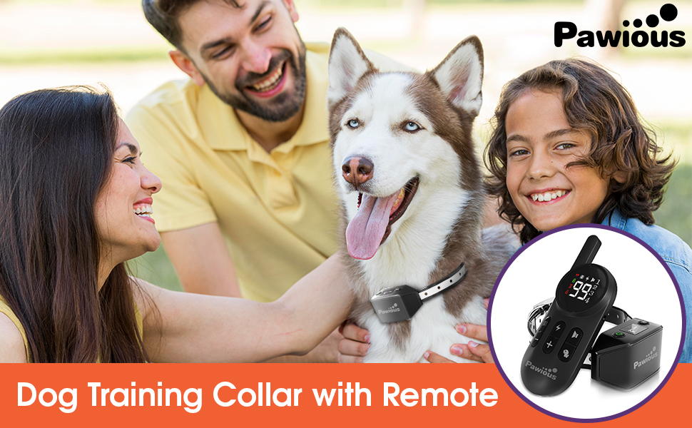 shock collars for dogs with remote dog training collar dog shock collar shock collar for dogs