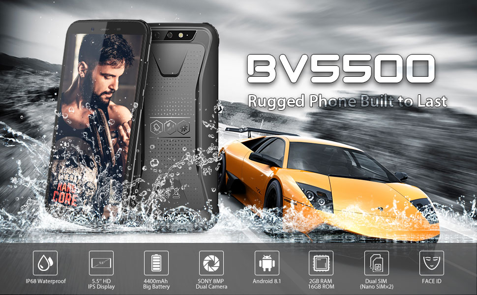 BV5500