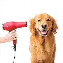 Hair Dryer Dog Clipper