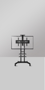 TS1881 mobile tv stand