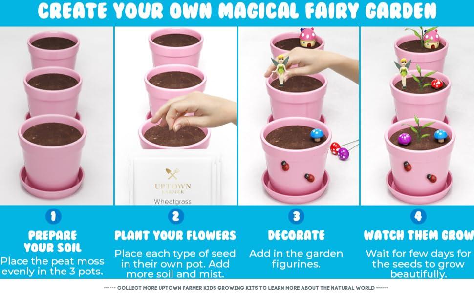 Daffodil Tea RESTOCKED AND IMPROVED Fairy Garden Starter Kit