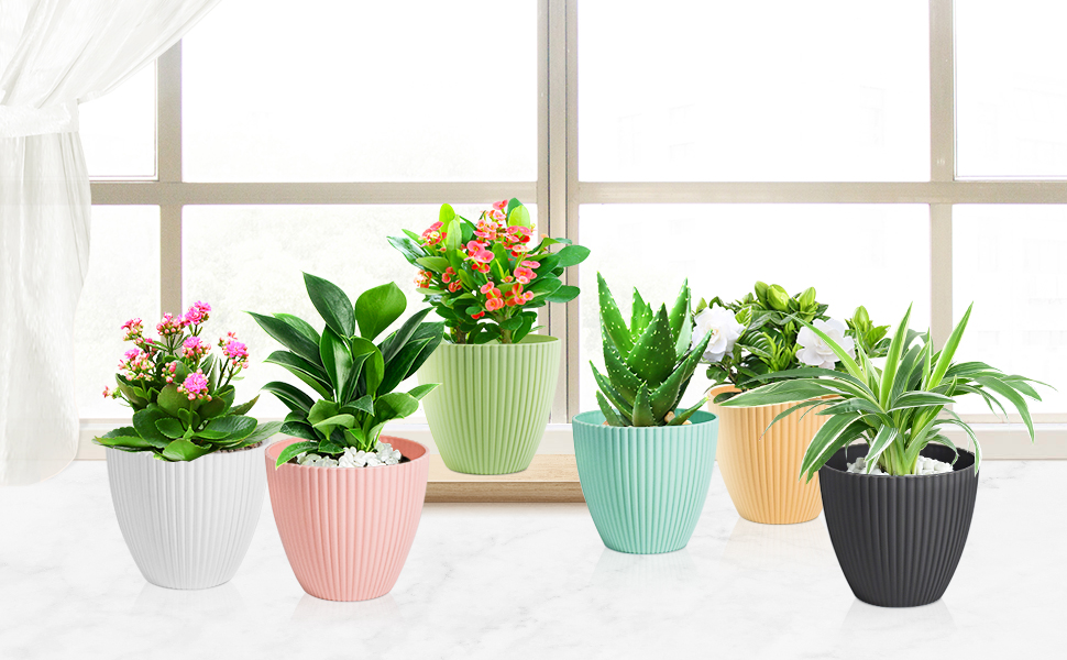 6 inch plant pots for indoor and outdoor plants