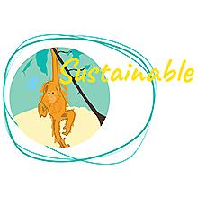 castor oil, sustainable, naissance