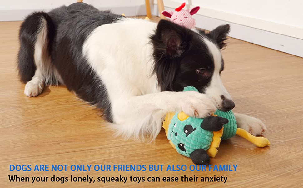 Toys will always be with your dog