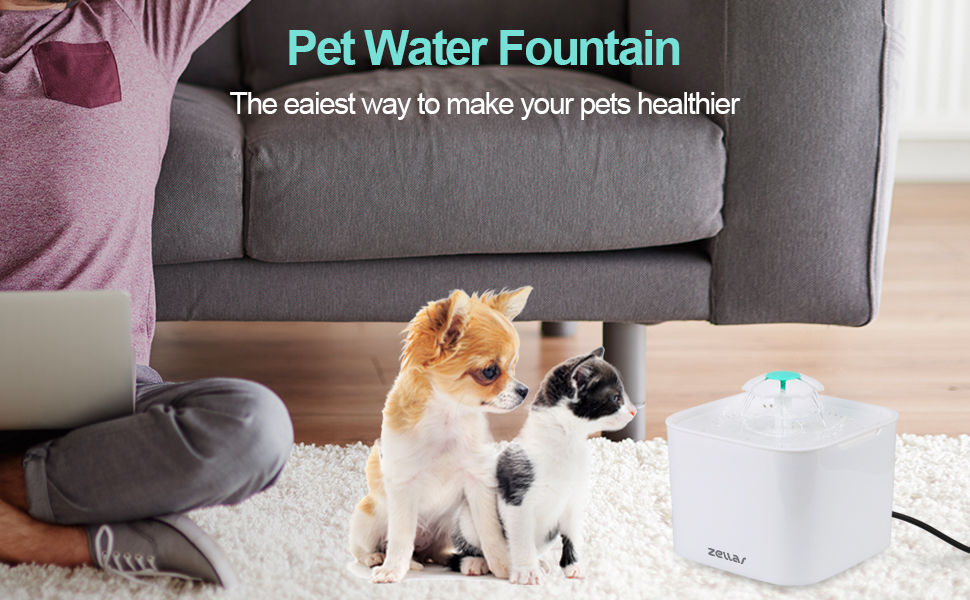 pet water fountain for cats