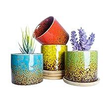 3.8 Inch Succulent Pots