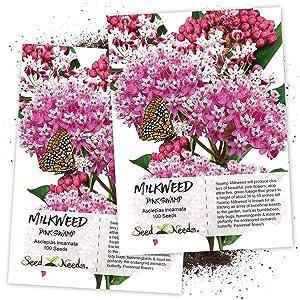 Pink Swamp milkweed seeds for planting