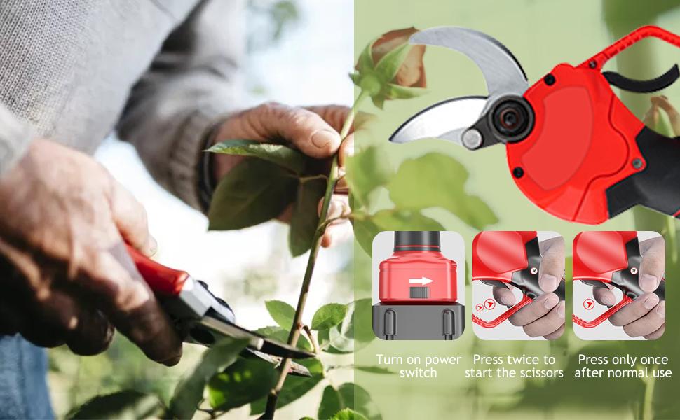 Tree Branch Pruner