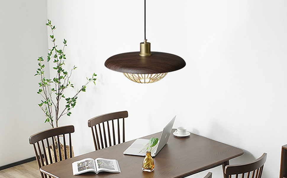 40w Retro style Pendant Lights E26 Base Haning Pendant Lamps Adjustable wire 200cm/78 in ch