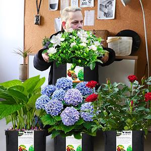 5 Grow Pots