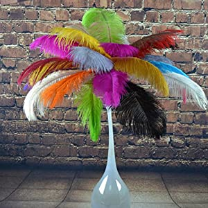 Decoration Ostrich Feathers