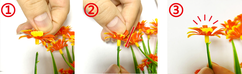 how to plus in the flower