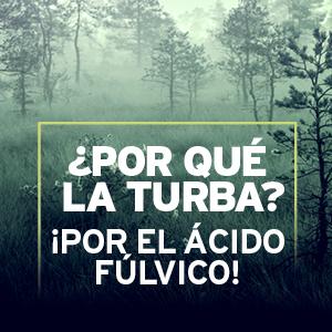 Champú Para el Crecimiento del Cabello con Aceite de Argán - Tratamiento Libre de Sulfato Natural con Lodo de Turba Efectivo Para Cabello Fino y ...