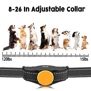 Adjustable Collar & Feature Protection Mode
