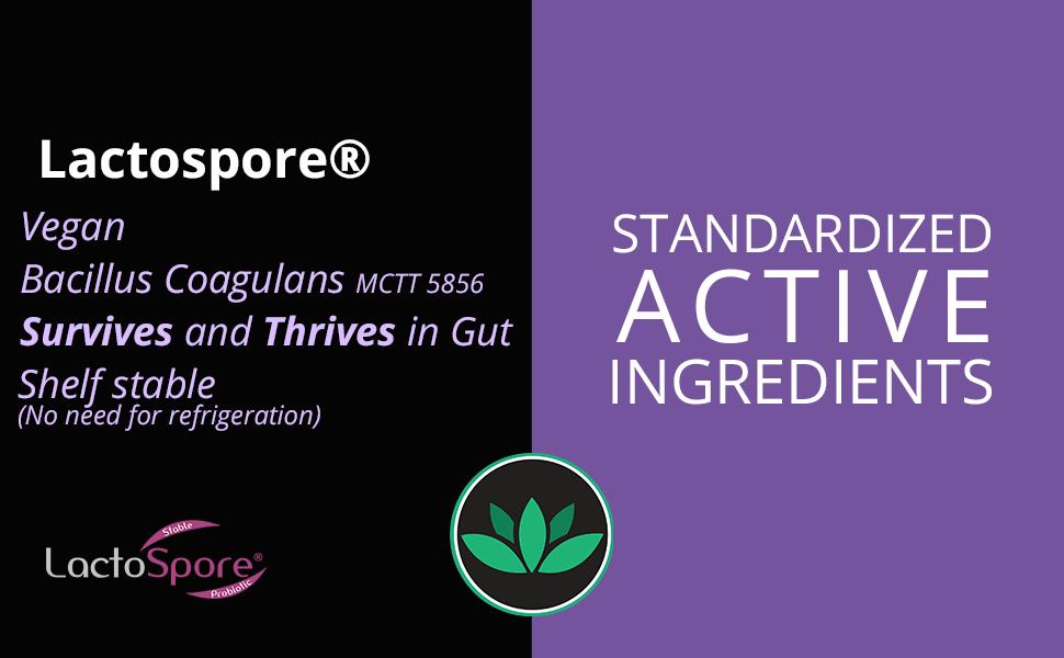 88herbs probiotic - lactospore
