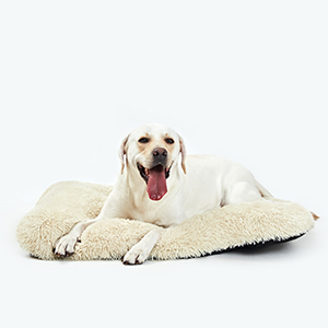 dog crate pads washable dog crate pads chew proof crate mats for large dogs crate mat 42