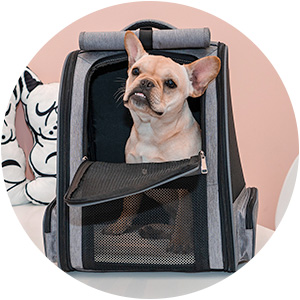 Cat Carrier Backpack, Two-Sided Entry Dog Backpack Carriers for Small Cats Dogs Puppy for outdoor