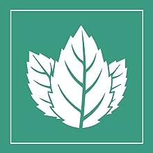 Menthol Minze Kristalle Mentholkristalle Aufguss Sauna kühlend Entspannung Muskelkater