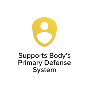 Supports Body's Primary Defense System