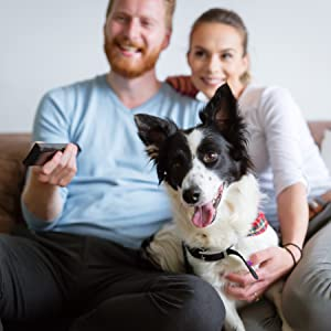 family watching TV with dog