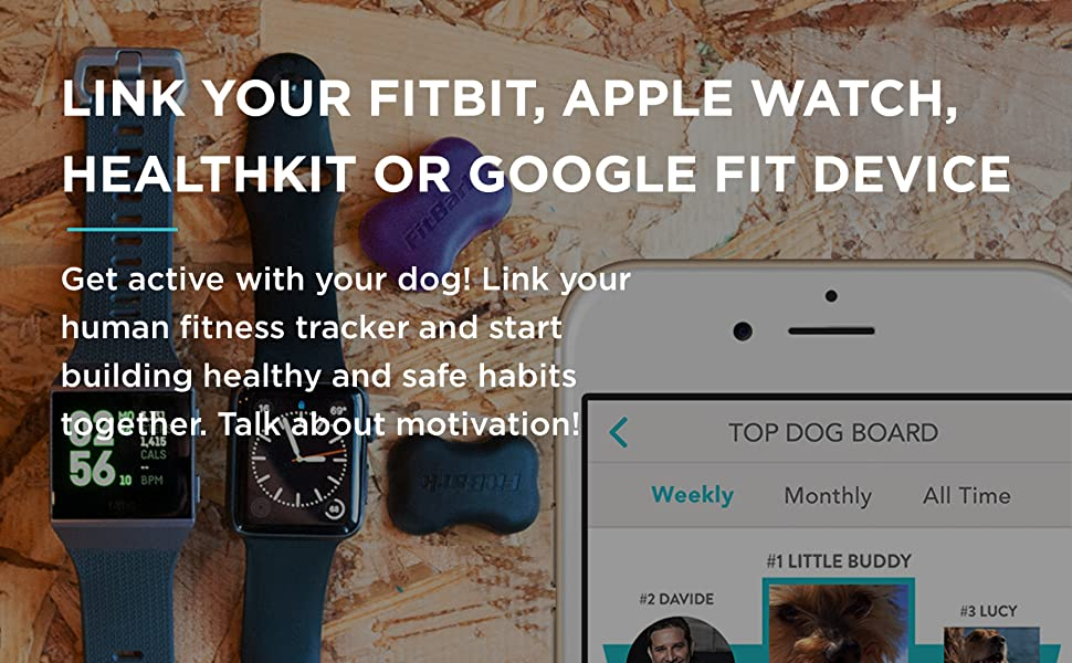 dog tracker, dog gps, gps tracker for dogs, gps dog collar, dog tracking collar, pet tracker