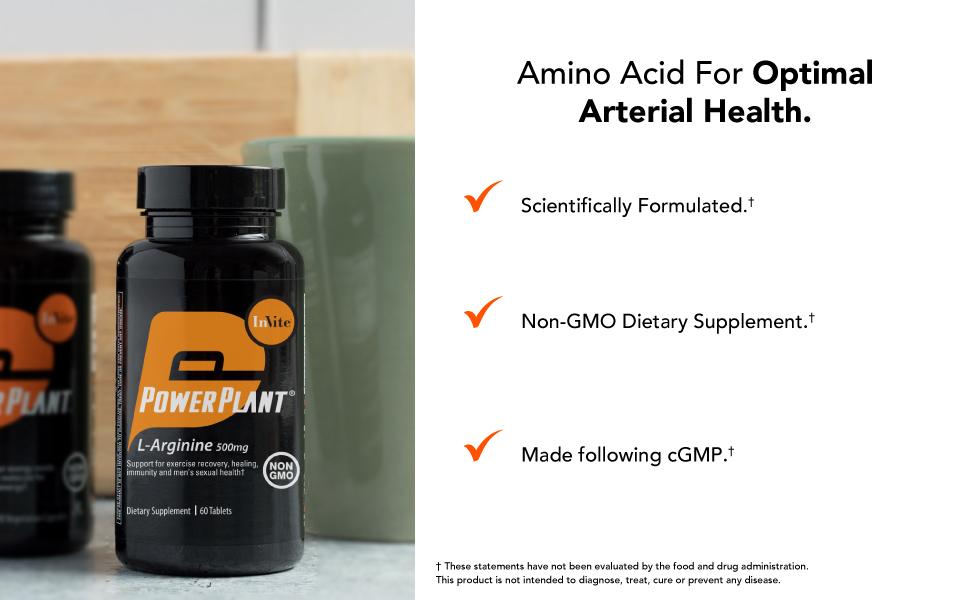 amino acid for optimal arterial health
