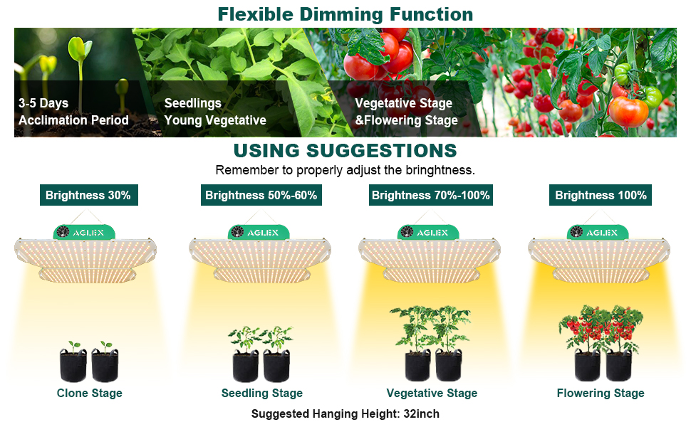 AGLEX K4000 can be adjusted lighting intensity to suit plants growth