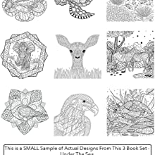 9 images of coloring book designs