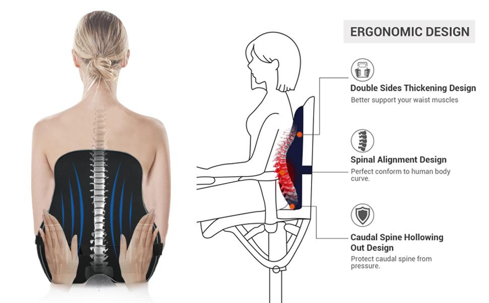 Ergonomic Lumbar Support