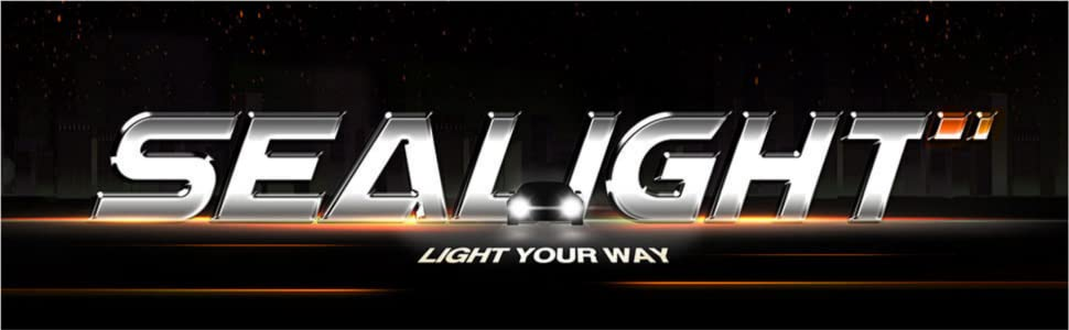PREMIUM Super Bright-HONDA CIVIC 10th génération-Intérieur DEL Smd Lumière Kit