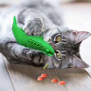 cat treat toys