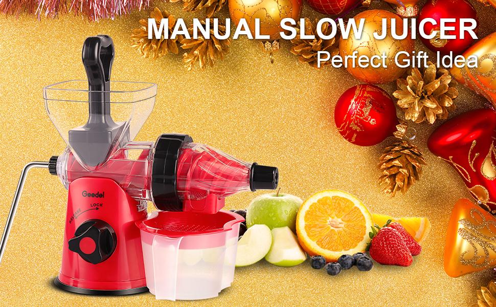 Manual Masticating Juicer