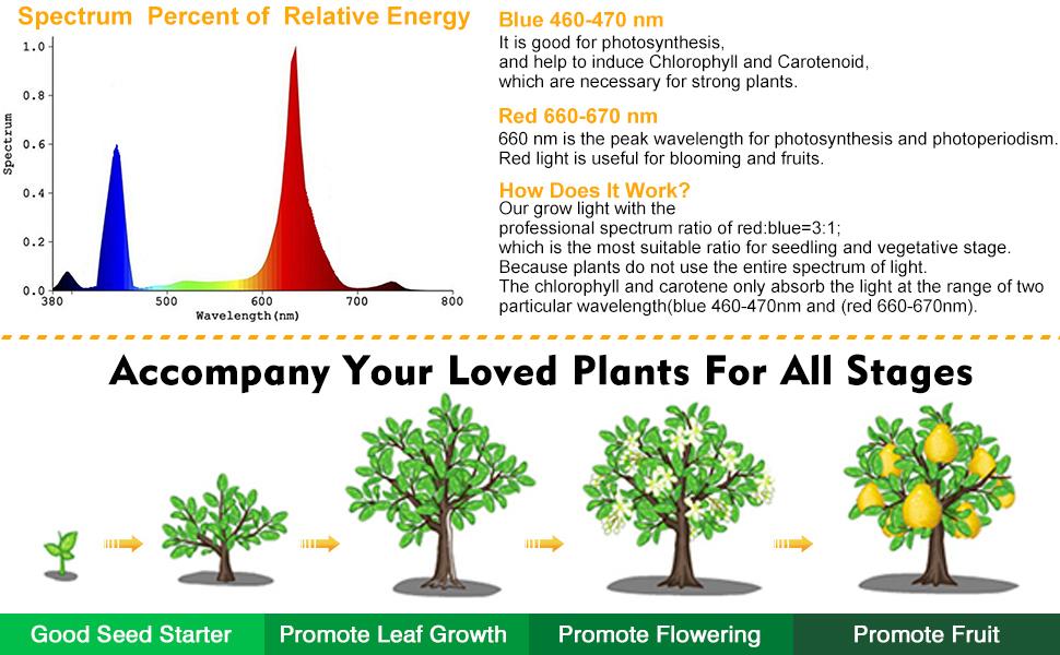 2 x Smart C02 Carbon Dioxide Grow Bag Tent Plant Growth Aid Crops Fruits Hydrop