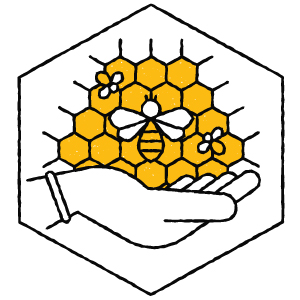 we love our bees and care for them naturally for our propolis