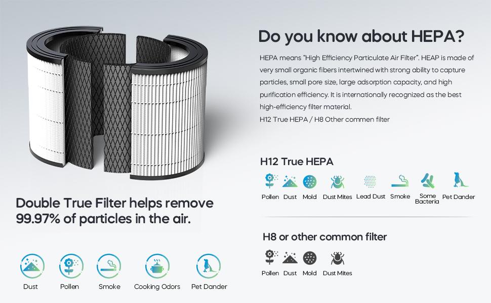 True HEPA filter removes dust, pollen, pet dander, smell, odor, mold, smoke allergies