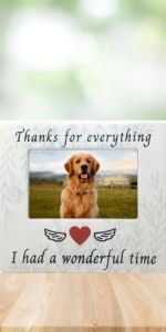 picture frame remembrance pet dog cat