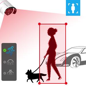 security camera ai detection